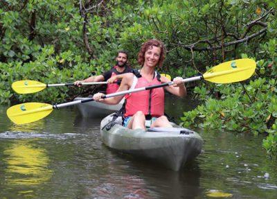 Navigating mangrove tunnels