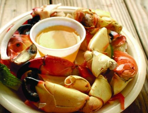 Sensational seafood spots in Naples Florida
